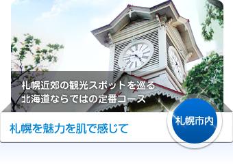 【札幌市内】札幌の魅了を肌で感じて - 札幌近郊の観光スポットを巡る北海道ならではの定番コース