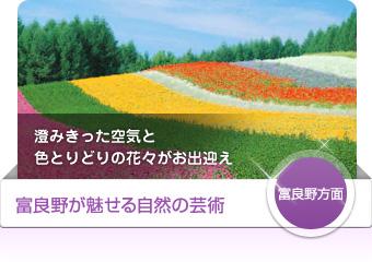 【富良野方面】富良野が魅せる自然の芸術 - 澄みきった空気と色とりどりの花々がお出迎え